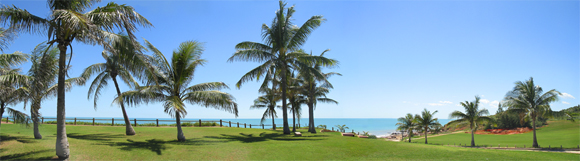 0001 - Cable Beach Palms, Broome, W.A.