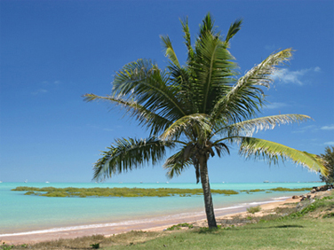 0257 - Roebuck Bay, Broome, W.A.