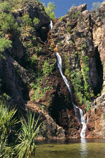 0096 - Wangi Falls, Litchfield National Park, N.T.
