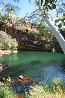 0179 - Galvans Gorge, Kimberley, W.A.