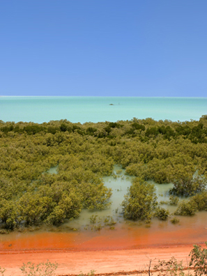 0340 - Colours of Broome, W.A.