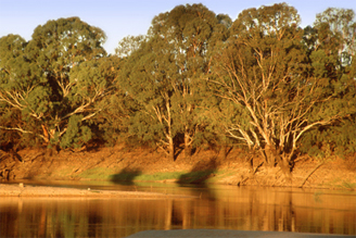 0105 - Murray River, VIC