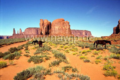 Monument Valley / L_USA_71